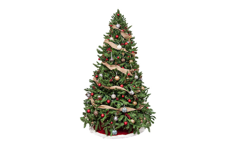 Christmas tree image background removal